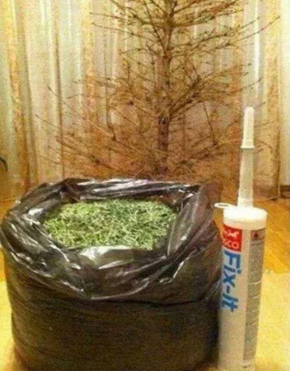 Der Weihnachtsbaum Modellbausatz